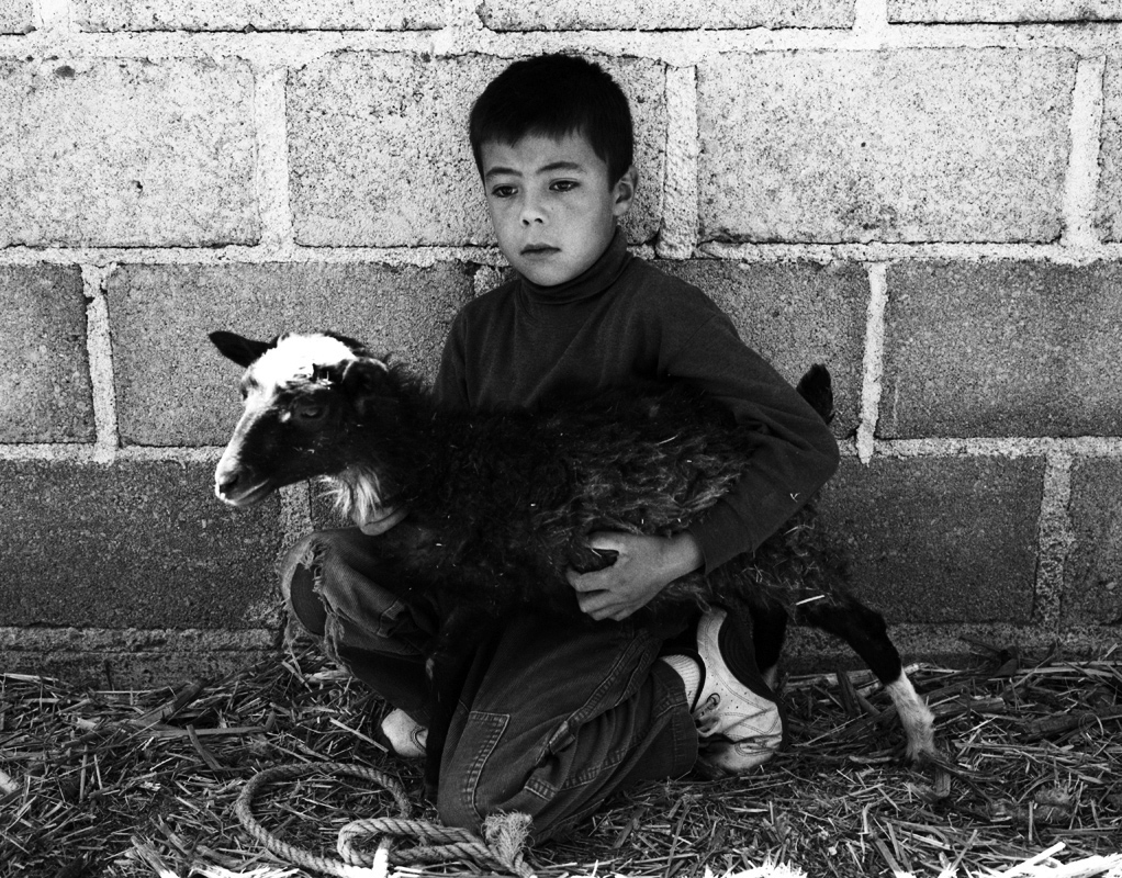 boy-with-his-goat